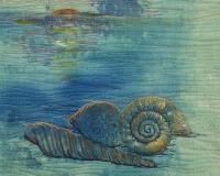 Sea-Shells,-Sea-Shells-ws