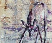 baby-kudu-ws